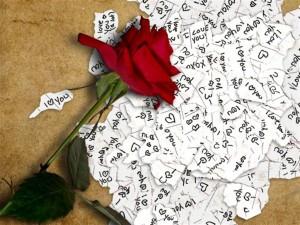 imagenes de amor con una rosa