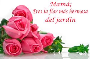 tarjetas para celebrar a mi madre el 10 de mayo 2