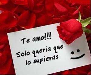 Imagenes De Rosas Para La Mujer Que Amo Imagenes De San Valentin